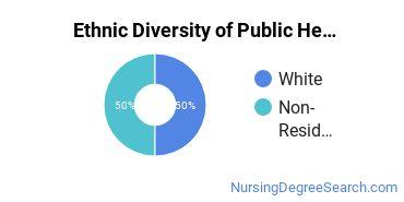 Public Health Nursing Majors in MD Ethnic Diversity Statistics