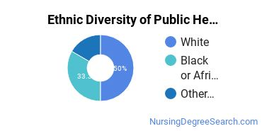 Public Health Nursing Majors in OH Ethnic Diversity Statistics