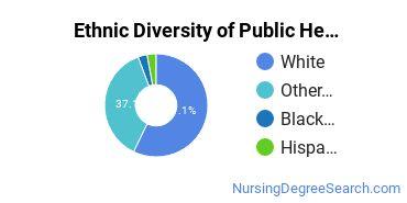 Public Health Nursing Majors in VA Ethnic Diversity Statistics