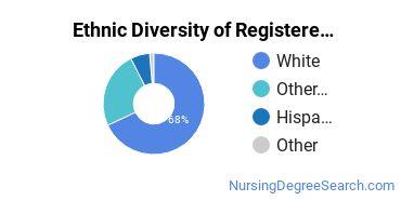 Registered Nursing Majors in AK Ethnic Diversity Statistics