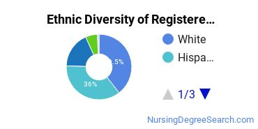 Registered Nursing Majors in CA Ethnic Diversity Statistics
