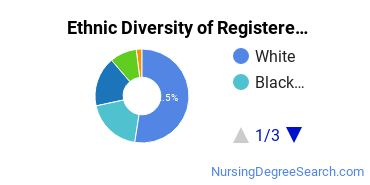 Registered Nursing Majors in DC Ethnic Diversity Statistics