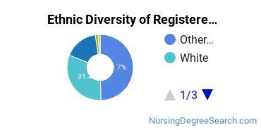 Registered Nursing Majors in HI Ethnic Diversity Statistics