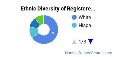 Registered Nursing Majors in IL Ethnic Diversity Statistics