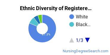 Registered Nursing Majors in IN Ethnic Diversity Statistics
