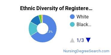 Registered Nursing Majors in MN Ethnic Diversity Statistics
