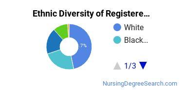 Registered Nursing Majors in NJ Ethnic Diversity Statistics