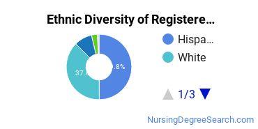 Registered Nursing Majors in NM Ethnic Diversity Statistics