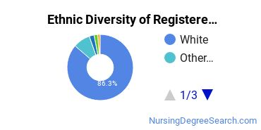 Registered Nursing Majors in VT Ethnic Diversity Statistics