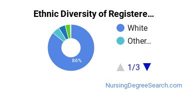 Registered Nursing Majors in WI Ethnic Diversity Statistics