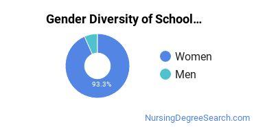 School Nursing Majors in GA Gender Diversity Statistics