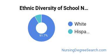 School Nursing Majors in IN Ethnic Diversity Statistics