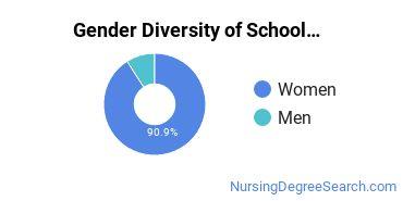 School Nursing Majors in IA Gender Diversity Statistics