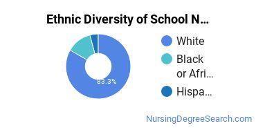 School Nursing Majors in MI Ethnic Diversity Statistics