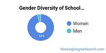 School Nursing Majors in MI Gender Diversity Statistics