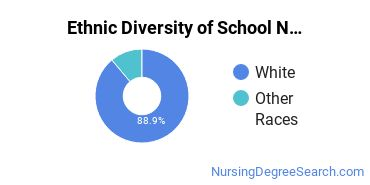 School Nursing Majors in MN Ethnic Diversity Statistics