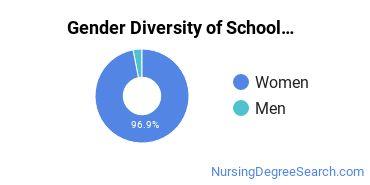 School Nursing Majors in NY Gender Diversity Statistics