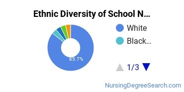 School Nursing Majors in OH Ethnic Diversity Statistics